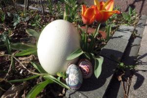 Grüße zu Ostern